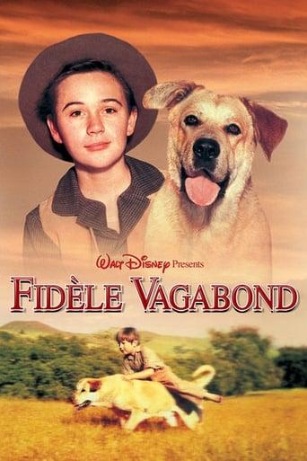 Fidle vagabond
