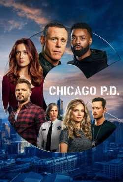 Chicago P.D. - Distrito 21 8ª Temporada Torrent (2020) Dual Áudio / Legendado WEB-DL 720p | 1080p – Download