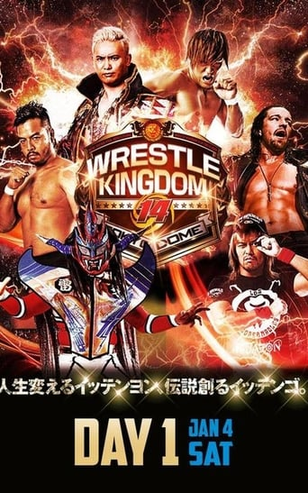 NJPW Wrestle Kingdom 14: Night 1