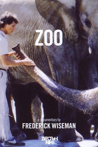 Watch Full Zoo