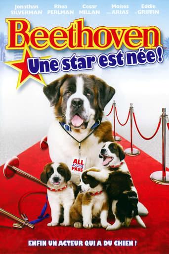 Beethoven 6 : une star est ne !