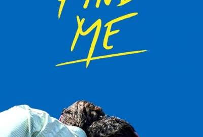 Call Me by Your Name Sequel streaming
