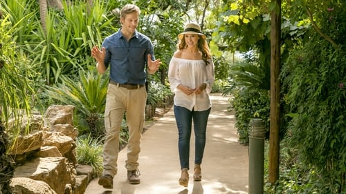 watch love on safari free online