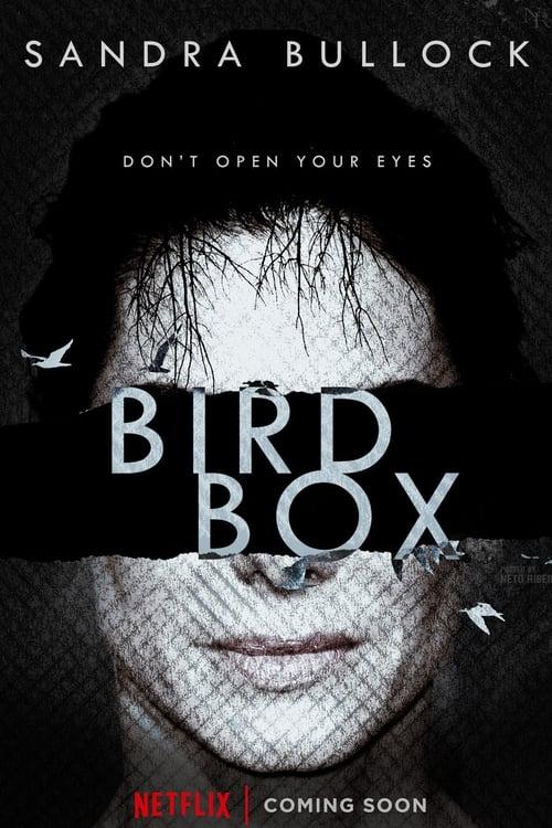 New Free Bird Box 2018 Watch Lilrel Howery Moviestar88df