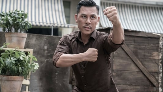 Watch Full Movie Master Z: Ip Man Legacy (2018)