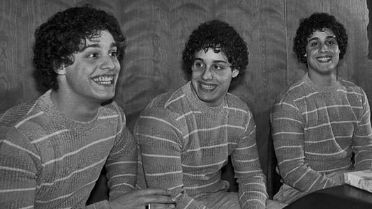Image Movie Three Identical Strangers 2018