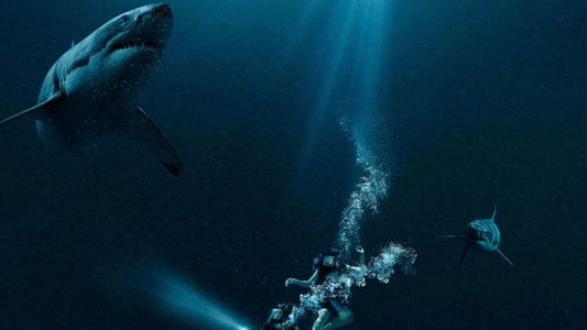 Image Movie 47 Meters Down 2017