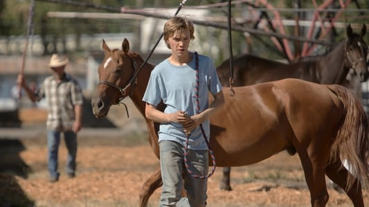 Backdrop Movie Lean on Pete 2018