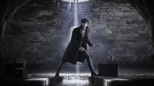 Backdrop Movie Fantastic Beasts: The Crimes of Grindelwald 2018