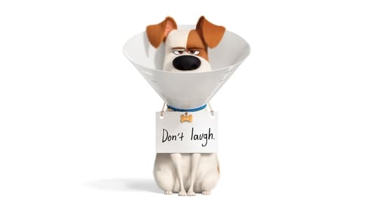 Watch Movie Online The Secret Life of Pets 2 (2019)