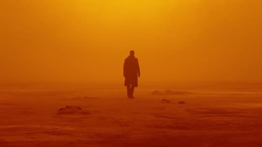 Backdrop Movie Blade Runner 2049 2017