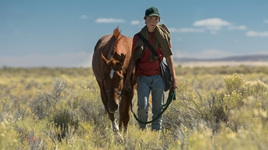 Image Movie Lean on Pete 2018