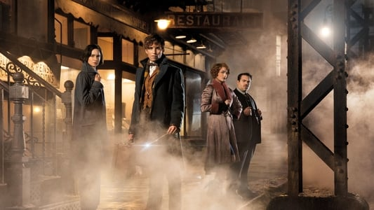Image Movie Fantastic Beasts and Where to Find Them 2016