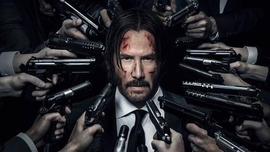 Image Movie John Wick: Chapter 2 2017