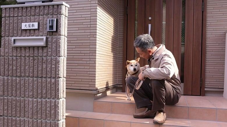 Backdrop Movie Inuyashiki 2018