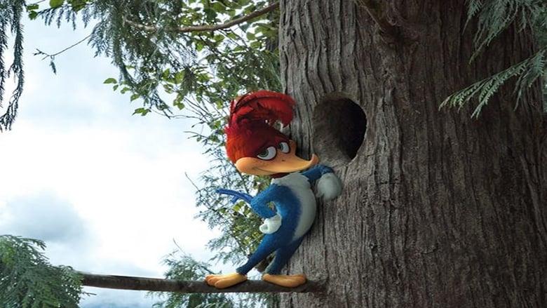 Backdrop Movie Woody Woodpecker 2017