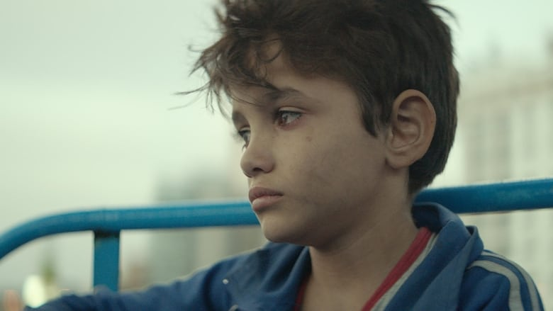 Backdrop Movie Capernaum 2018
