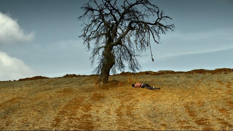 Backdrop Movie The Wild Pear Tree 2018