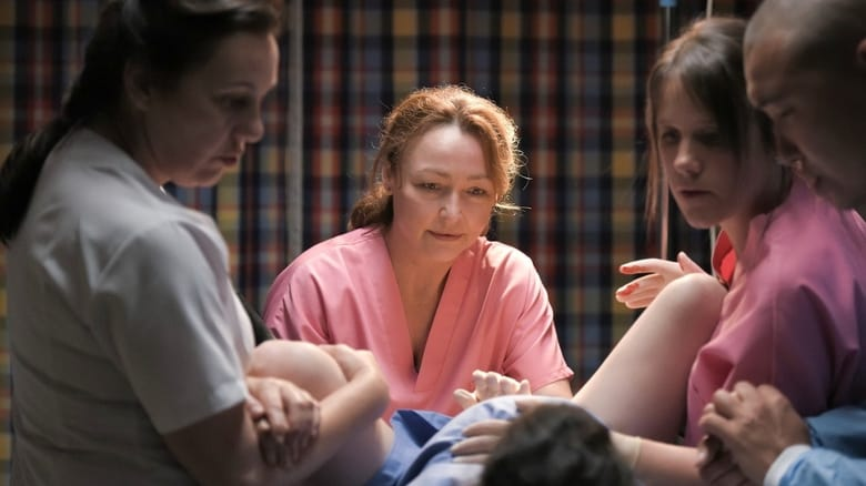 Watch Full Movie Online The Midwife (2017)