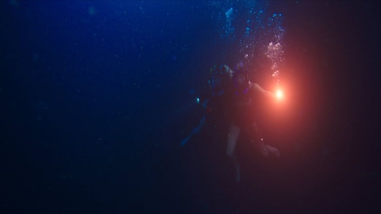 Backdrop Movie 47 Meters Down 2017