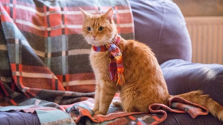 Un gato callejero llamado Bob'