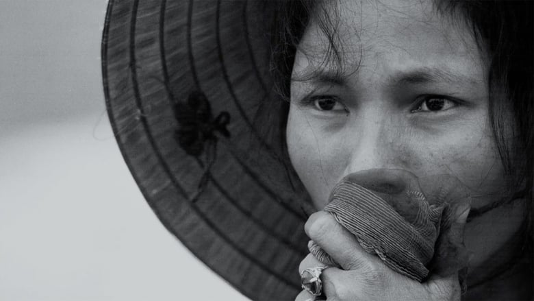 Backdrop Movie The Vietnam War 2017