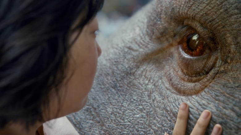 Backdrop Movie Okja 2017