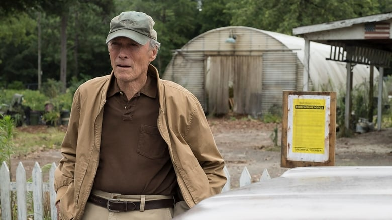 Backdrop Movie The Mule 2018