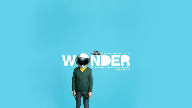 Backdrop Movie Wonder 2017