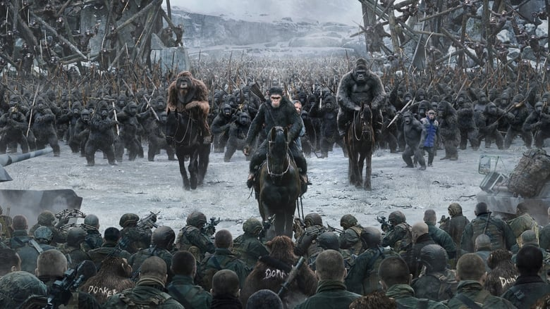 Backdrop Movie War for the Planet of the Apes 2017