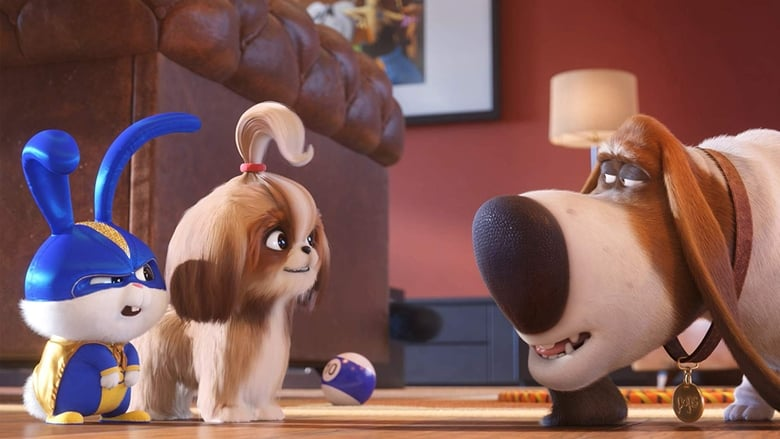 Backdrop Movie The Secret Life of Pets 2 2019