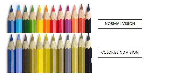 ノーマルと赤緑色盲の人のビジョンの比較図
