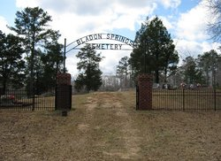 Bladon Springs Cemetery in Bladon Springs, Alabama