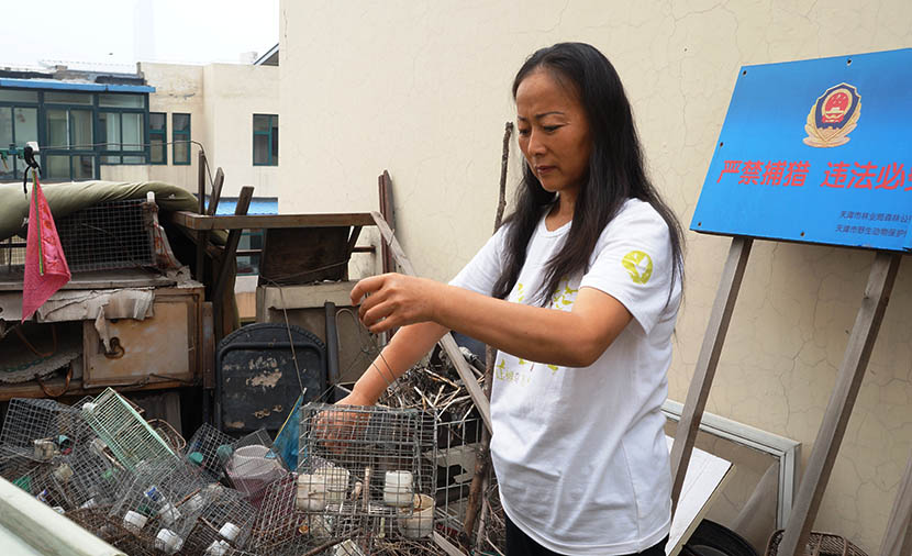 Liu Yidan handles birdcages found in the wild on the balcony of her apartment in Tianjin, June 30, 2016. Fan Yiying/Sixth Tone