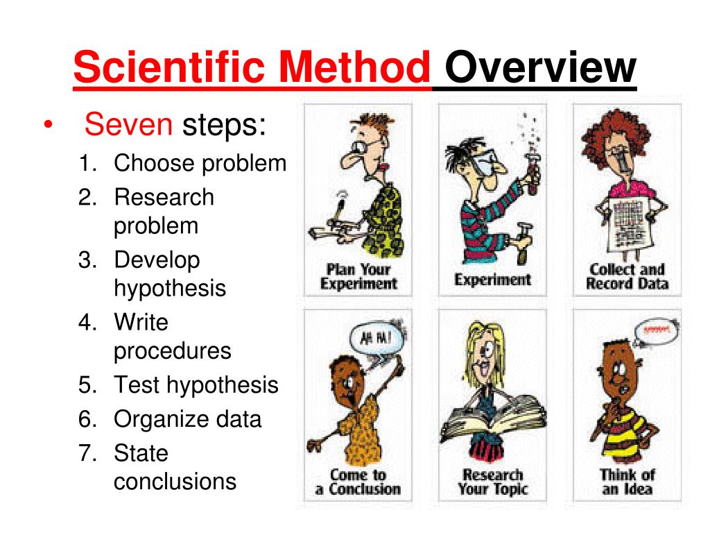 Write The Steps Of The Scientific Method In Order Steps
