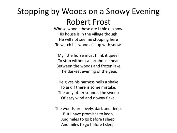 Snowy Evening Author Stopping Woods