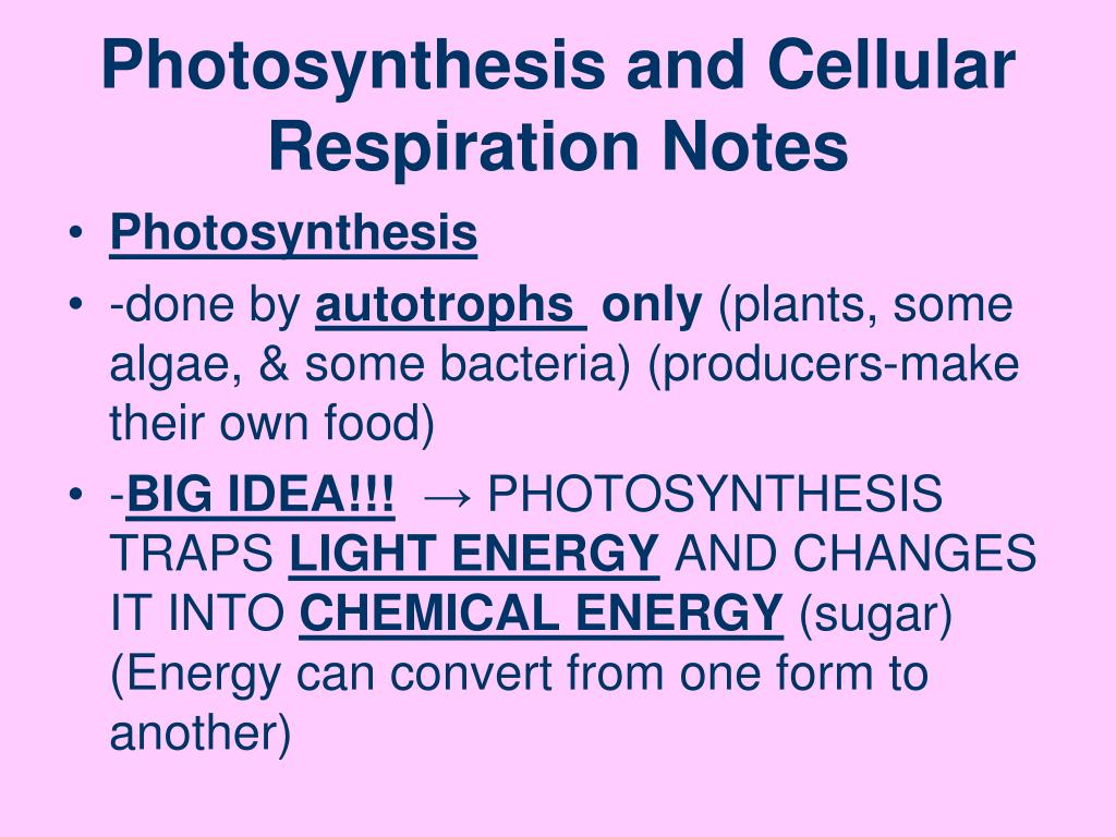 How To Remember Photosynthesis And Cellular Respiration