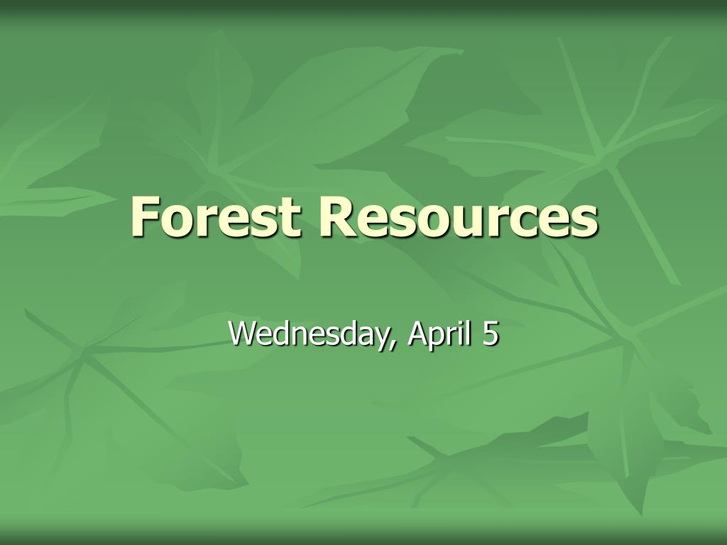 Such as being able to throw and catch accurately, to their eyesight, which suffers as a result of insufficient exposure to daylight. Ppt Forest Resources Powerpoint Presentation Free Download Id 3410809