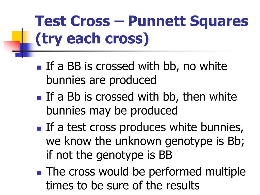 Pure Recessive Square Recessive Pure Punnett And