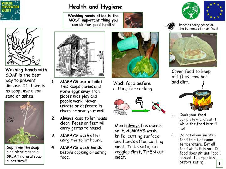 Ppt Health And Hygiene Powerpoint Presentation Free Download Id 3852953