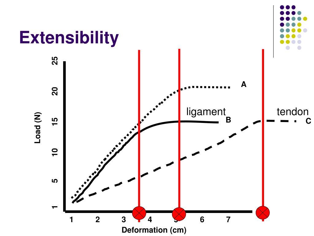 Stress Ligament Strain Curve