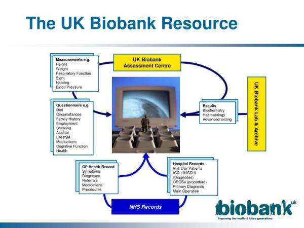 PPT - Steve Walker (CIO, UK Biobank) UK Biobank – IT ...