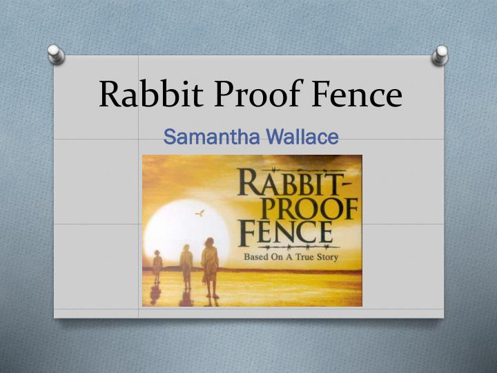 Actual Pictures Fence Rabbit Proof