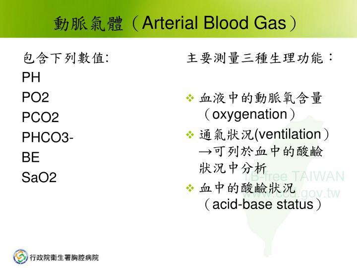 PPT - 動脈氣體的判讀 PowerPoint Presentation - ID:4563157