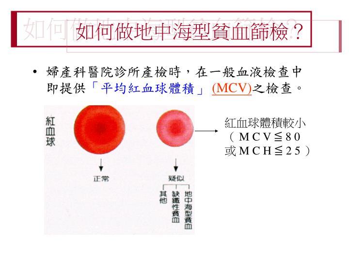 PPT - 認識地中海型貧血 PowerPoint Presentation - ID:4647435