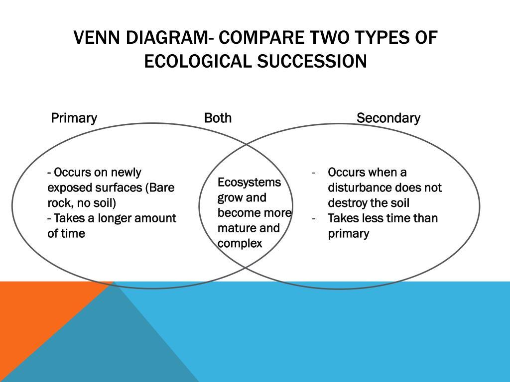 Primary And Secondary Succession Venn Diagram