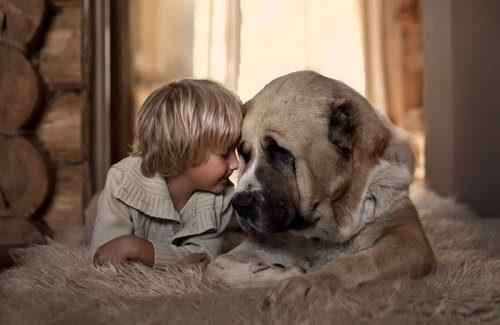 Очаровательные фото детей с собаками / Малютка