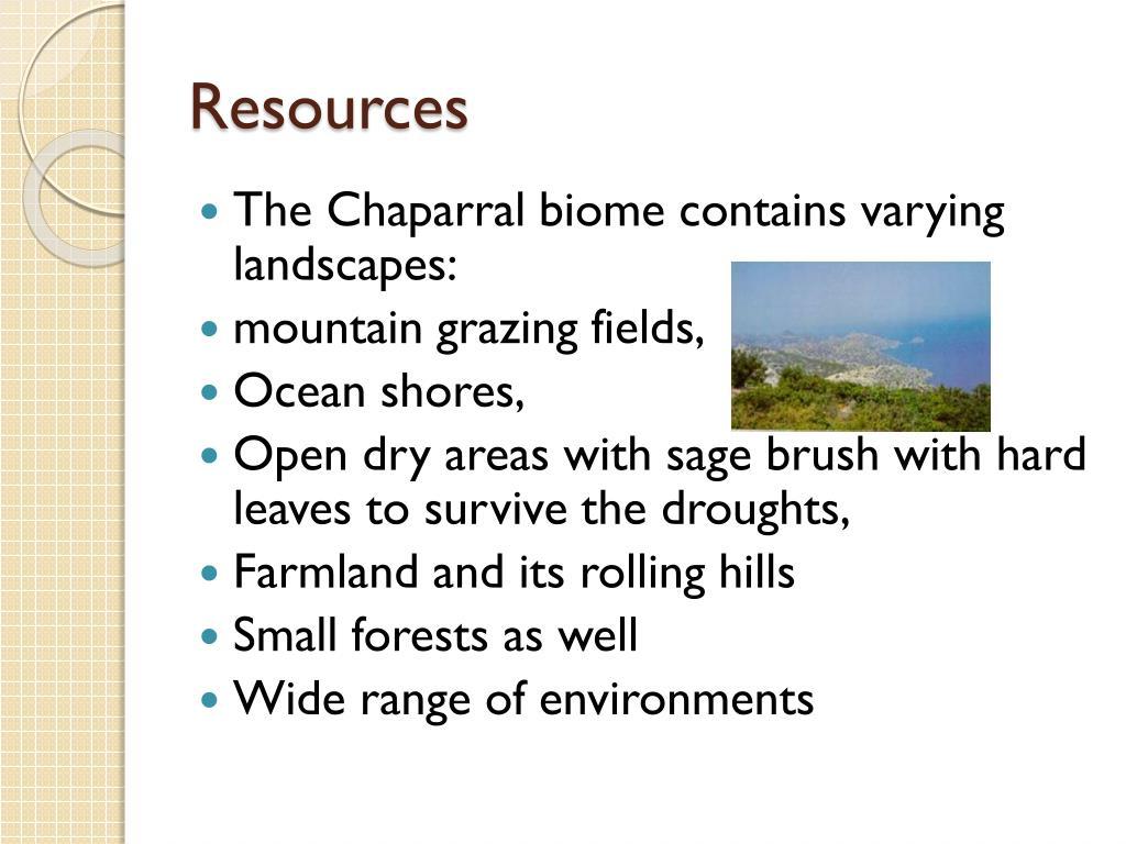Chaparral Biome Description