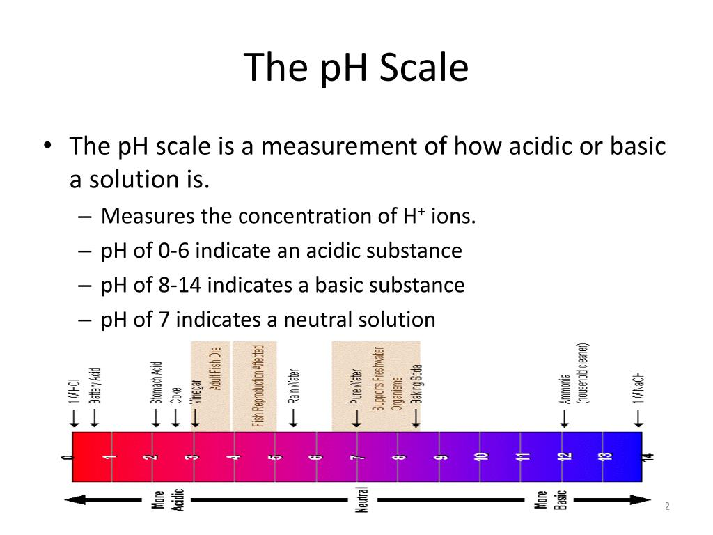 30 Ph Scale Coloring Worksheet