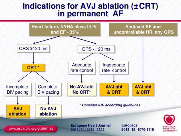 PPT - Indications on cardiac pacing and cardiac ...